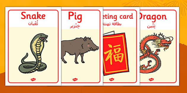 Chinese New Year Display Posters Arabic Translation - arabic, Chinese new year, display poster, A4, display, China, lantern, dragon, chopsticks, noodles, year of the rabbit, ox, snake, fortune cookie, pig, money wallet