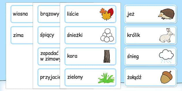Zimowe słownictwo po polsku - pory roku, przedszkole, śnieg