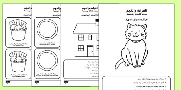 Rنشاطات ست كلمات رئيسية القراءة والفهم, worksheet