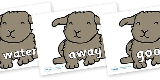 Next 200 Common Words on Rabbits - Next 200 Common Words on  - DfES Letters and Sounds, Letters and Sounds, Letters and sounds words, Common words, 200 common words