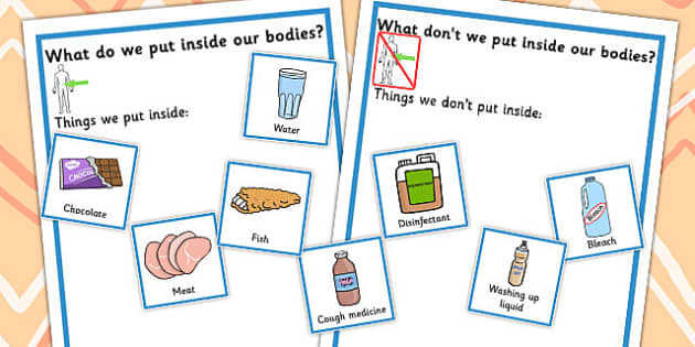 What Do We Put Inside Our Bodies Sorting Activity - sorting
