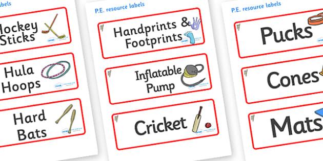 Koala Themed Editable PE Resource Labels - Themed PE label, PE equipment, PE, physical education, PE cupboard, PE, physical development, quoits, cones, bats, balls, Resource Label, Editable Labels, KS1 Labels, Foundation Labels, Foundation Stage Labe