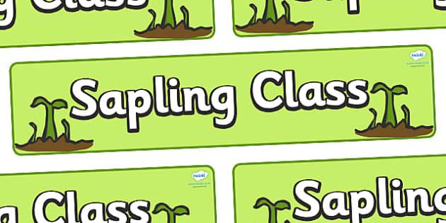 Sapling Class Display Banner - sapling class, growth, class banner, class display,  classroom banner, classroom areas signs, areas, display banner, display
