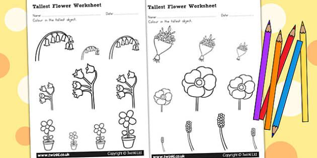 Flower Themed Tallest Object Worksheet - Australia, Flower