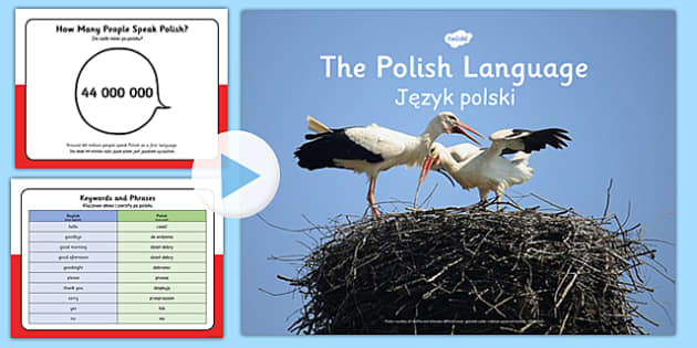 Polish Language PowerPoint Polish Translation - polish, language, powerpoint, polish language, information, origin