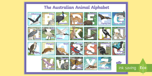 Australian Animal Alphabet A2 Display Poster - Literacy,Australia, animals, a-z, native, australian