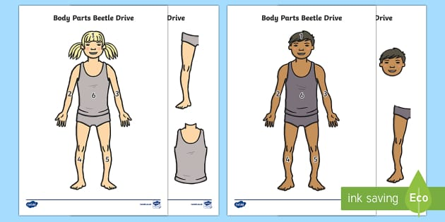 Body Parts Beetle Drive Game - Requests KS1, skeleton, body, game, dice, turn taking, arm, leg, head,
