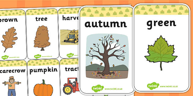 Autumn Flash Cards - seasons, weather, fall, visual aid, keywords