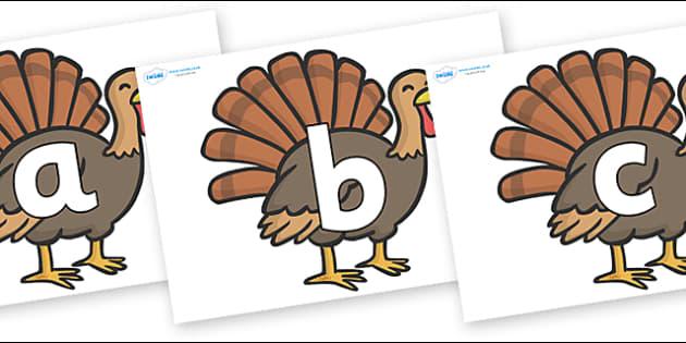 Phoneme Set on Turkeys - Phoneme set, phonemes, phoneme, Letters and Sounds, DfES, display, Phase 1, Phase 2, Phase 3, Phase 5, Foundation, Literacy