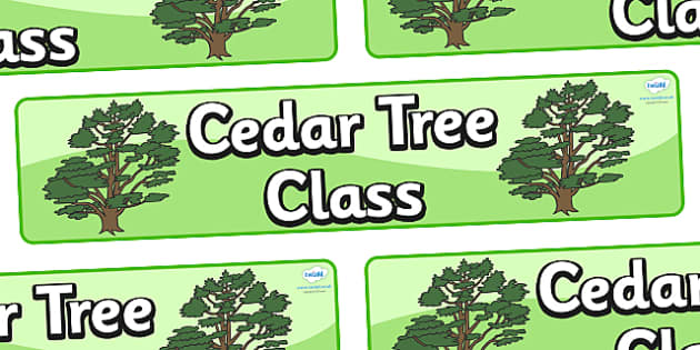 Cedar Tree Themed Classroom Display Banner - Themed banner, banner, display banner, Classroom labels, Area labels, Poster, Display, Areas