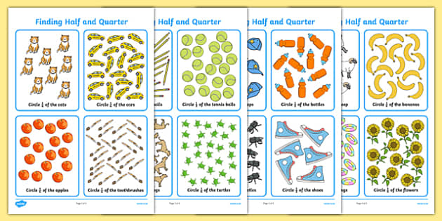 Finding Half and a Quarter Activity Sheet, worksheet
