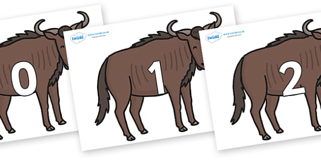 Numbers 0-50 on Wildebeests - 0-50, foundation stage numeracy, Number recognition, Number flashcards, counting, number frieze, Display numbers, number posters