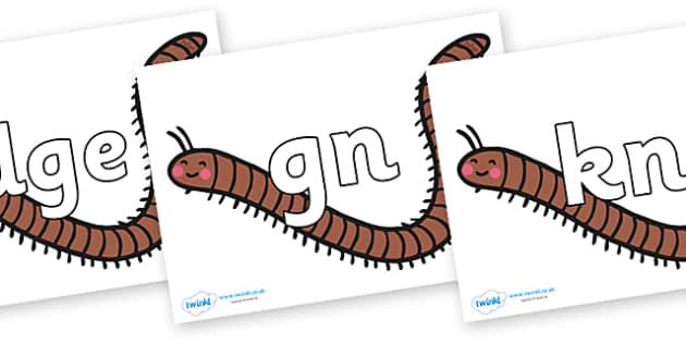 Silent Letters on Millipedes - Silent Letters, silent letter, letter blend, consonant, consonants, digraph, trigraph, A-Z letters, literacy, alphabet, letters, alternative sounds