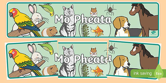 Mo Pheata Display Banner-Irish
