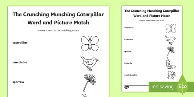 Word and Picture Match Activity Sheet to Support Teaching on The Crunching Munching Caterpillar