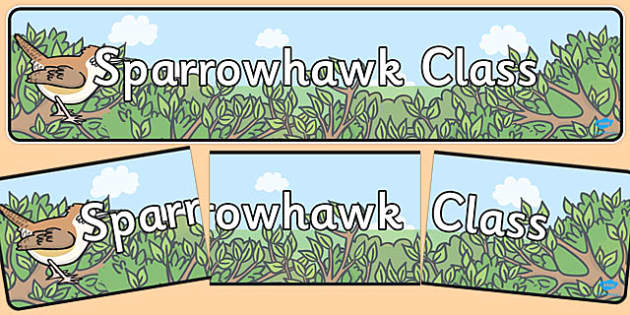 Sparrowhawk Class Display Banner - Classroom, birds, organisation, display, title