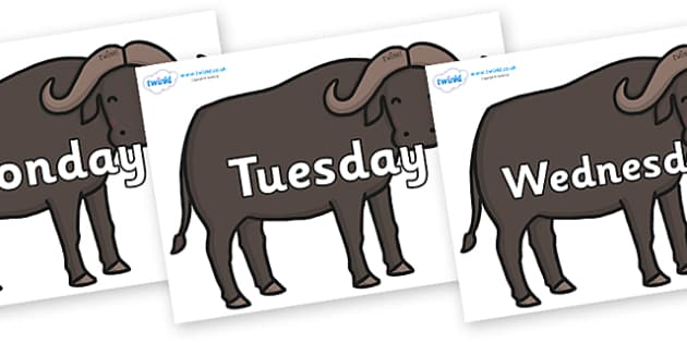 Days of the Week on Buffalos - Days of the Week, Weeks poster, week, display, poster, frieze, Days, Day, Monday, Tuesday, Wednesday, Thursday, Friday, Saturday, Sunday