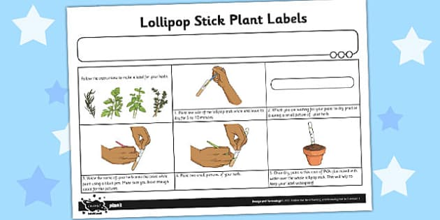 Lollipop Stick Plant Labels Activity Sheet - activity, plant, worksheet