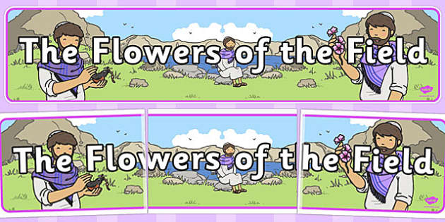 The Flowers of the Field Display Banner - parable, display, field