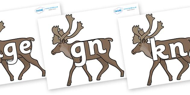 Silent Letters on Caribous - Silent Letters, silent letter, letter blend, consonant, consonants, digraph, trigraph, A-Z letters, literacy, alphabet, letters, alternative sounds