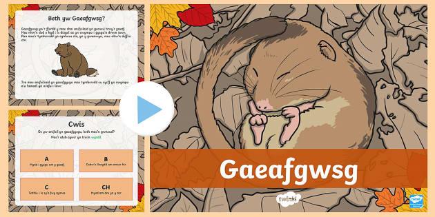 Pŵerbwynt Gaeafgwsg - gaeafgwsg, gaeafgysgu, anifeiliaid, gaeaf, gwanwyn,,Welsh