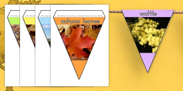Autumn Display Photo Bunting - seasons, weather, display, photos