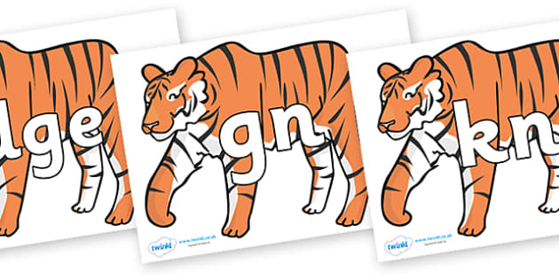 Silent Letters on Chinese New Year Tiger - Silent Letters, silent letter, letter blend, consonant, consonants, digraph, trigraph, A-Z letters, literacy, alphabet, letters, alternative sounds