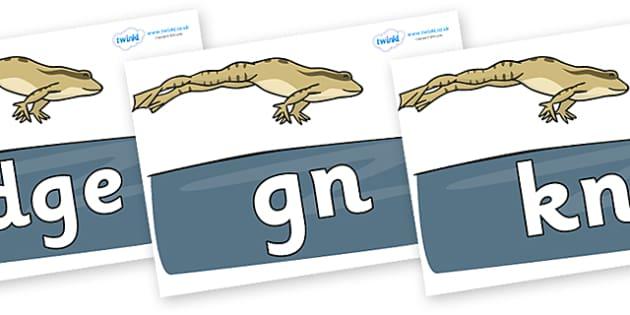 Silent Letters on Frog - Silent Letters, silent letter, letter blend, consonant, consonants, digraph, trigraph, A-Z letters, literacy, alphabet, letters, alternative sounds