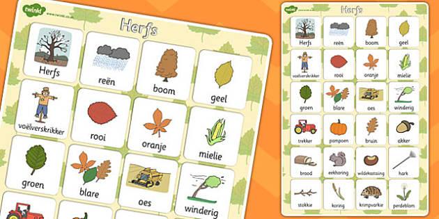 Afrikaans Autumn Vocabulary Poster - afrikaans, autumn vocabulary