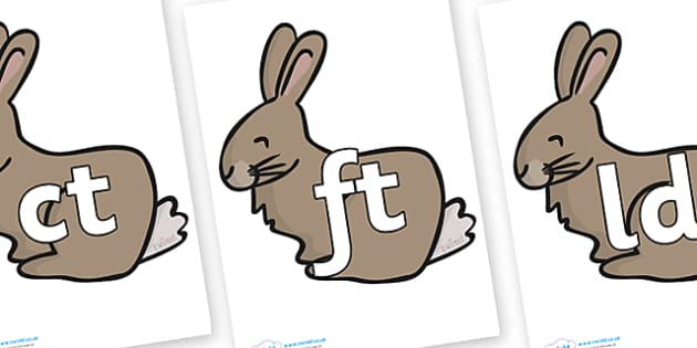 Final Letter Blends on Rabbits - Final Letters, final letter, letter blend, letter blends, consonant, consonants, digraph, trigraph, literacy, alphabet, letters, foundation stage literacy