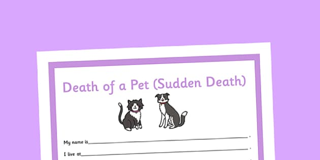 Social Situation Sheet Death of a Pet Sudden Death Primary - social story, sheet, death, pet, sudden death, primary