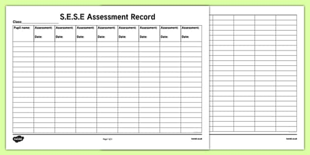 ROI S.E.S.E. Assessment Record Checklist-Irish