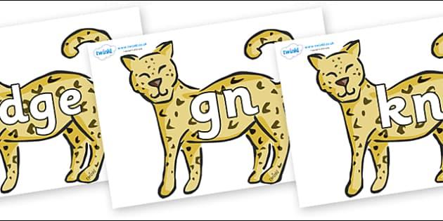 Silent Letters on Leopards - Silent Letters, silent letter, letter blend, consonant, consonants, digraph, trigraph, A-Z letters, literacy, alphabet, letters, alternative sounds