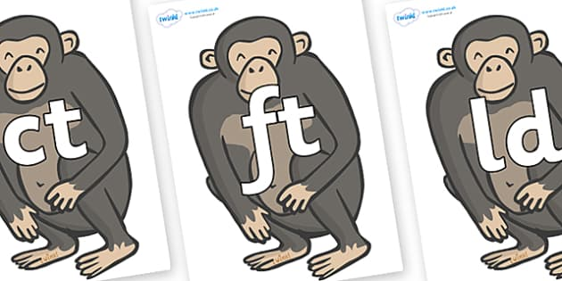 Final Letter Blends on Chimpanzees - Final Letters, final letter, letter blend, letter blends, consonant, consonants, digraph, trigraph, literacy, alphabet, letters, foundation stage literacy