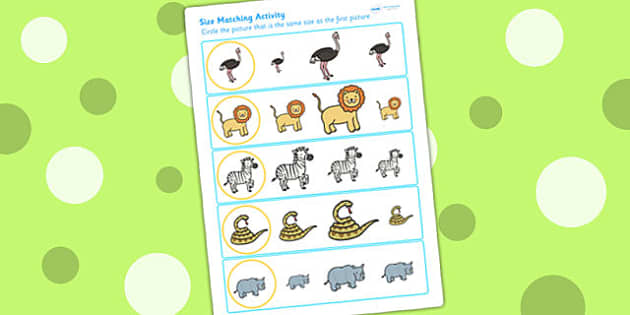 Safari Size Matching Worksheets - size order, ordering, jungle