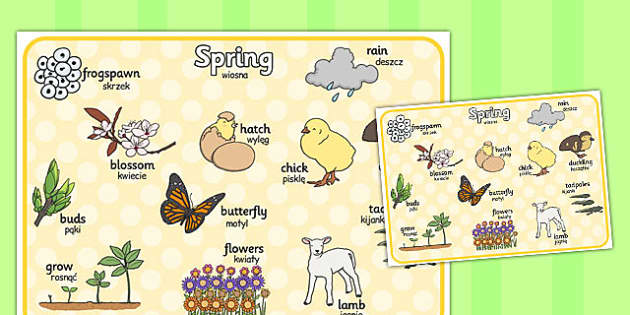 Spring Word Mat Polish Translation - seasons, season, literacy