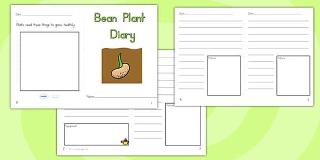 Bean Plant Diary Writing Frame - bean plant, beans, science, bean