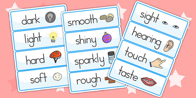 Senses Topic Word Cards - senses, word card, key words, ourselves