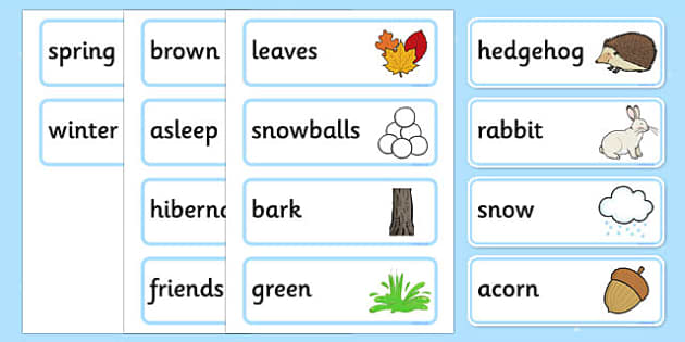 A Little Bit of Winter Vocabulary - a little bit, winter, vocabulary, word cards, word, cards