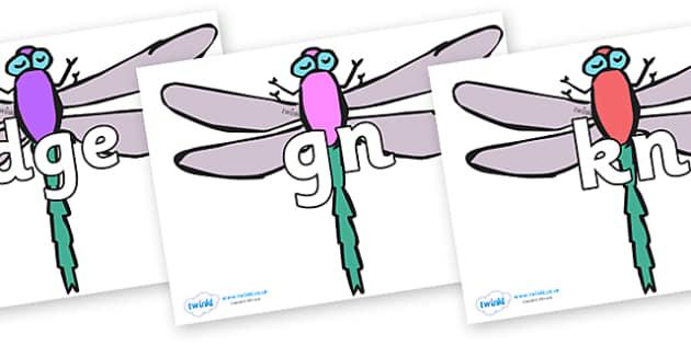 Silent Letters on Dragonflies - Silent Letters, silent letter, letter blend, consonant, consonants, digraph, trigraph, A-Z letters, literacy, alphabet, letters, alternative sounds