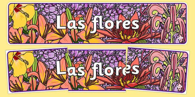 Flowers IPC Display Banner Spanish - spanish, plants, flower, header, display