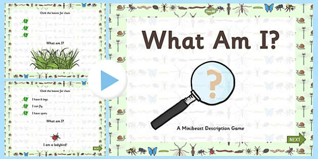 Minibeasts What Am I Interactive PowerPoint Game - powerpoint, power point, interactive, minibeasts powerpoint, minibeasts what am I powerpoint, minibeasts game, minibeasts interactive powerpoint game, powerpoint presentation, presentation, slide sho