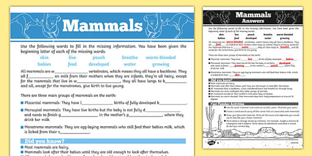 Australian Animals Years 3-6 Mammals Differentiated Cloze Passage Activity Sheet - australia, Australian Curriculum, animals, mammals, differentiated, cloze, fast finisher, information, reading, worksheet