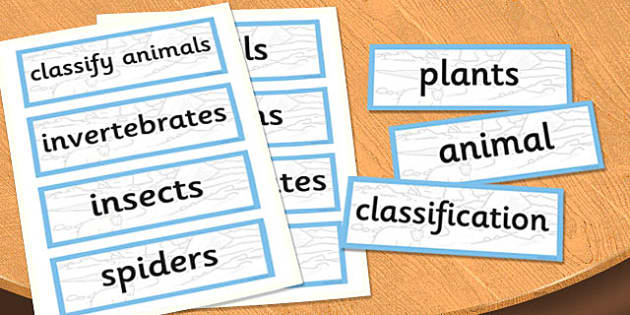 Y6 Living Things and their Habitats Scientific Vocabulary Cards