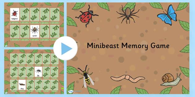 Minibeast Memory Game PowerPoint - minibeasts, memory, game