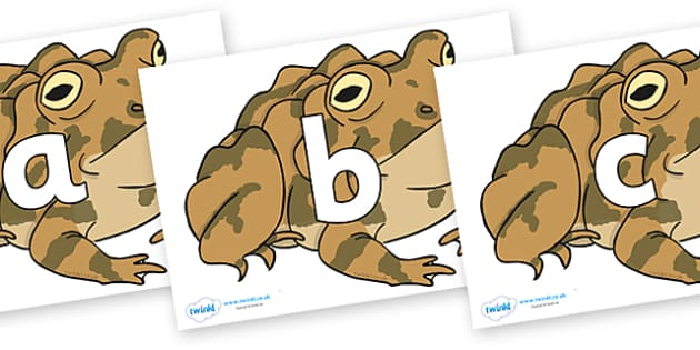 Phoneme Set on Toad - Phoneme set, phonemes, phoneme, Letters and Sounds, DfES, display, Phase 1, Phase 2, Phase 3, Phase 5, Foundation, Literacy