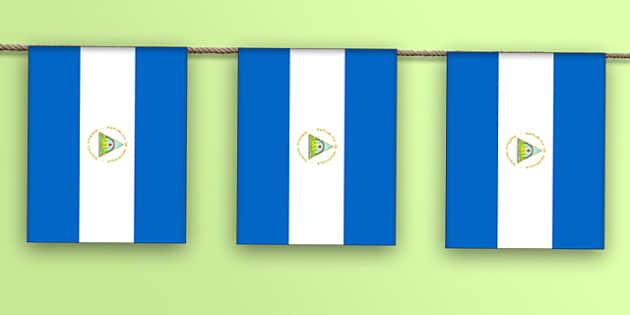 Nicaragua Flag Bunting - nicaragua flag, display bunting, display, bunting, nicaragua, flag