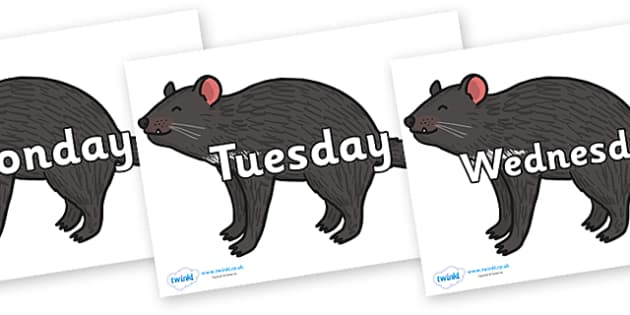 Days of the Week on Tasmanian Devil - Days of the Week, Weeks poster, week, display, poster, frieze, Days, Day, Monday, Tuesday, Wednesday, Thursday, Friday, Saturday, Sunday
