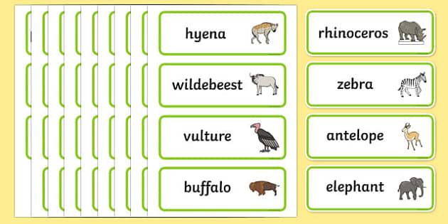 Africa Topic Word Cards - Africa, cards, flashcards, safari, lion, elephant, tiger, giraffe