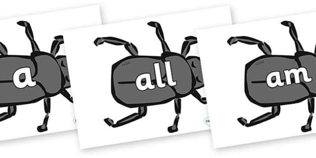 Foundation Stage 2 Keywords on Beetles - FS2, CLL, keywords, Communication language and literacy,  Display, Key words, high frequency words, foundation stage literacy, DfES Letters and Sounds, Letters and Sounds, spelling